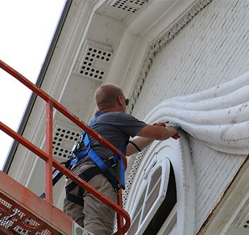commercial bird control & bird removal rochester NY
